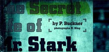 The Secret life of Mr. Stark