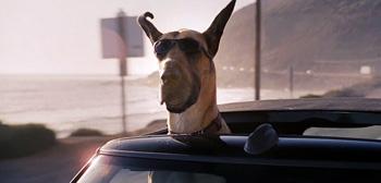 Marmaduke Teaser Trailer
