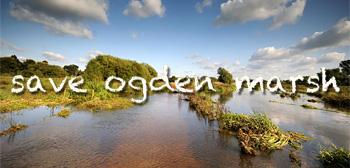 Save Ogden Marsh