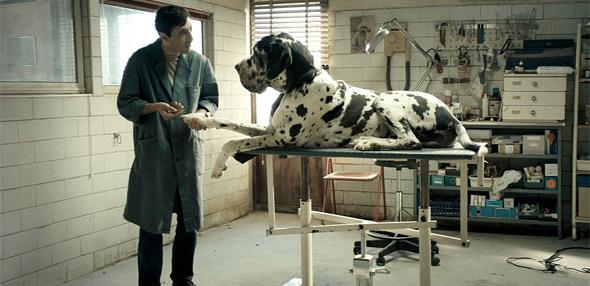 Cannes - Matteo Garrone's Dogman