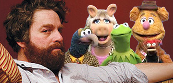 Zach Galifianakis / Muppets