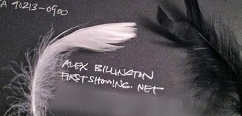 Black Swan Feathers Envelope