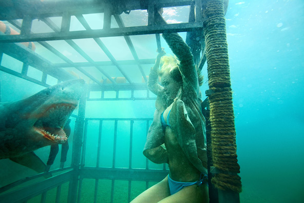 Shark Night 3D First Look