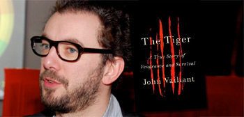 Michael Roskam / The Tiger