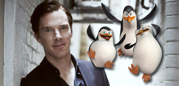 Benedict Cumberbatch / Penguins