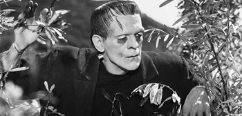 Guillermo del Toro Would Love to Remake 'Frankenstein' at Universal