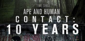 Ape Human Contact - 10 Years