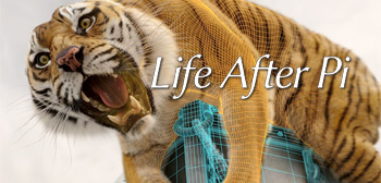 Life After Pi Doc