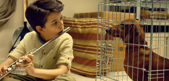 First Trailer for Todd Solondz's Highly Disliked New Film 'Wiener-Dog'