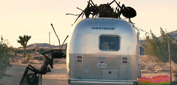 Dead Ant Trailer