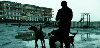 Dogman Trailer