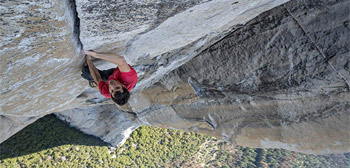 Free Solo Review