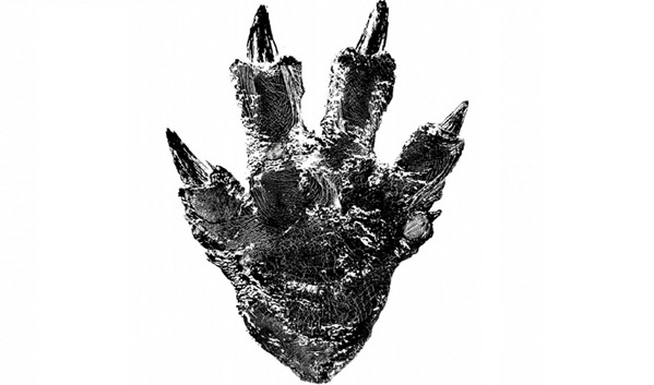 Toho Godzilla Teaser Image 2015
