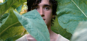 Happy as Lazzaro Trailer