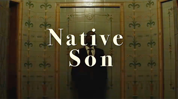 Native Son Film