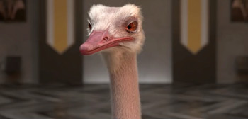 The Ostrich Politic Trailer