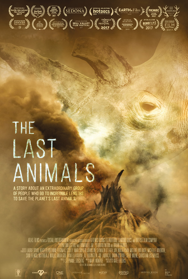 The Last Animals Poster