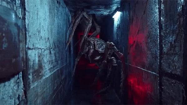 Abyssal Spider Movie