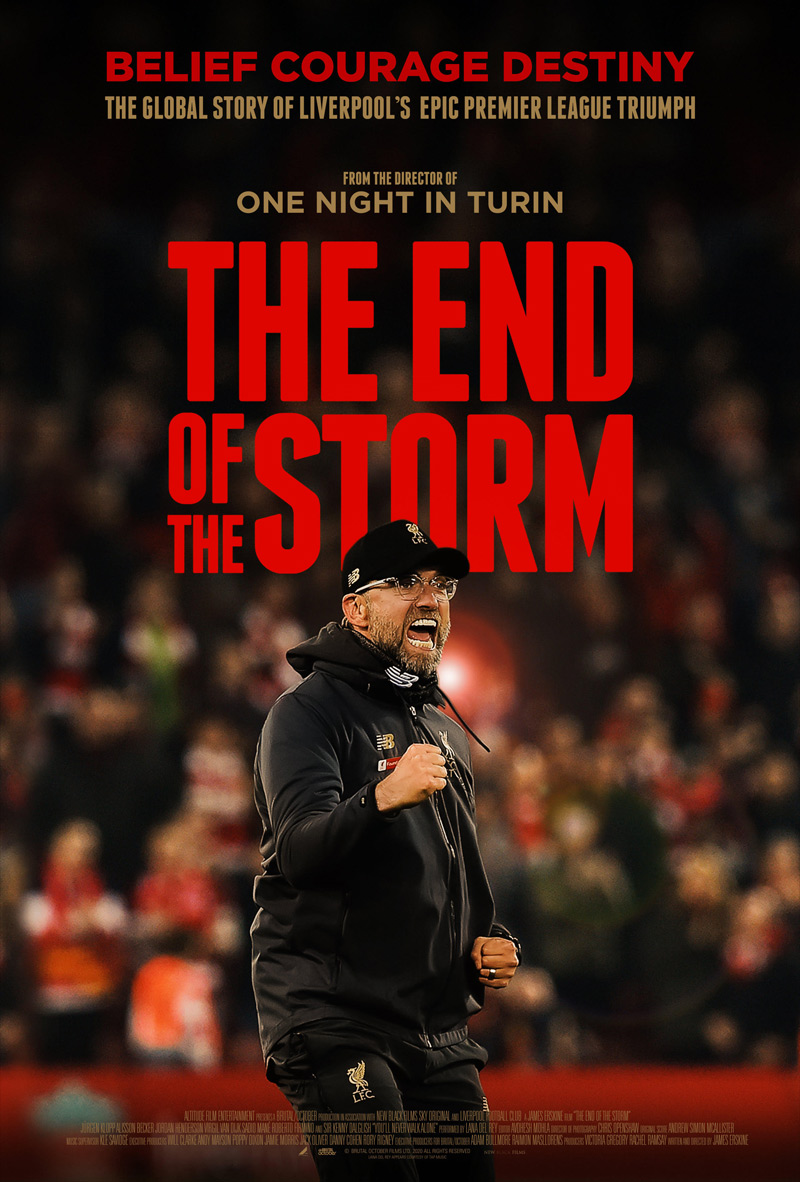 The End of the Storm Poster