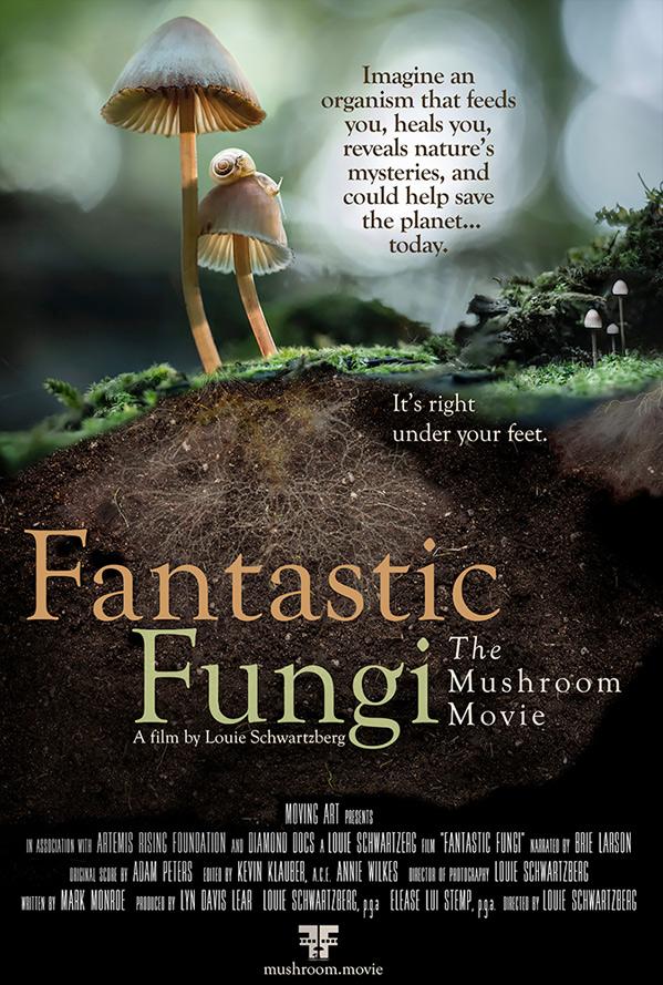 Fantastic Fungi Doc Poster