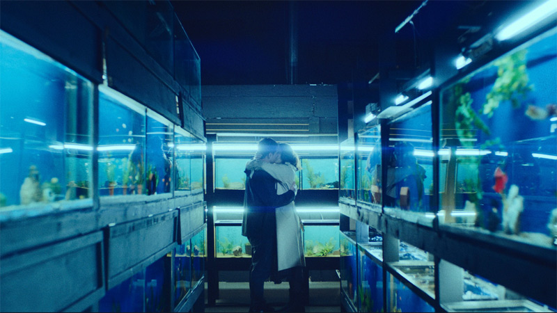 Film Little Fish