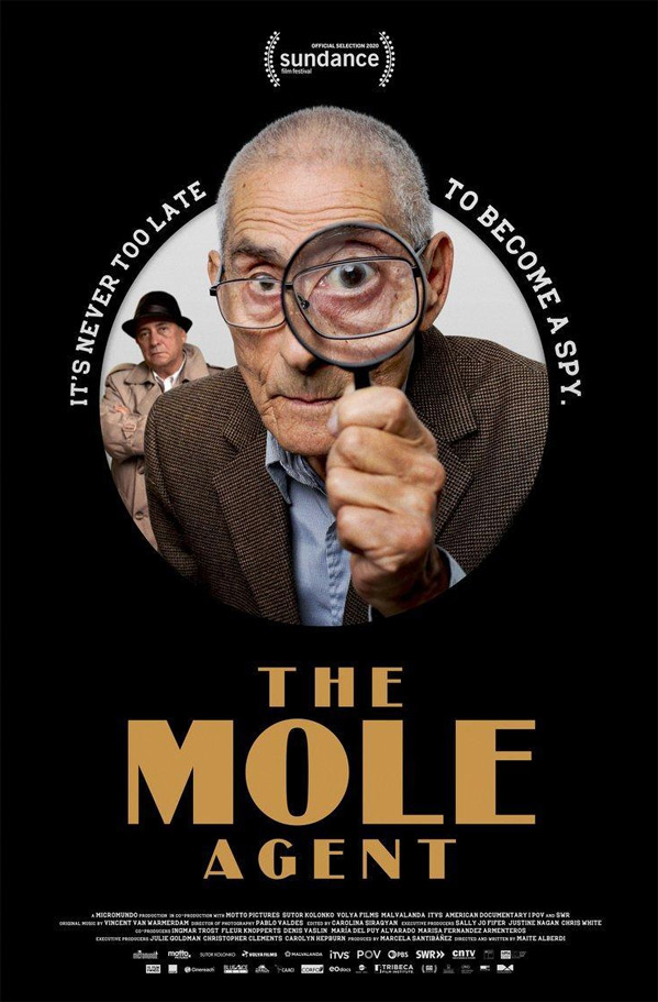 The Mole Agent Poster