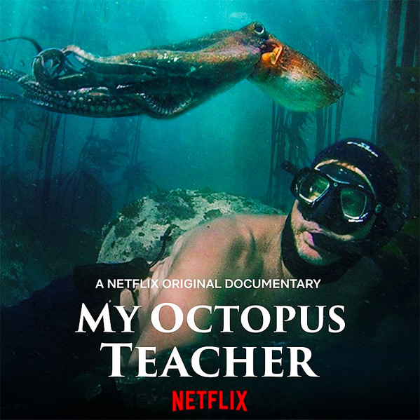 My Octopus Teacher Poster