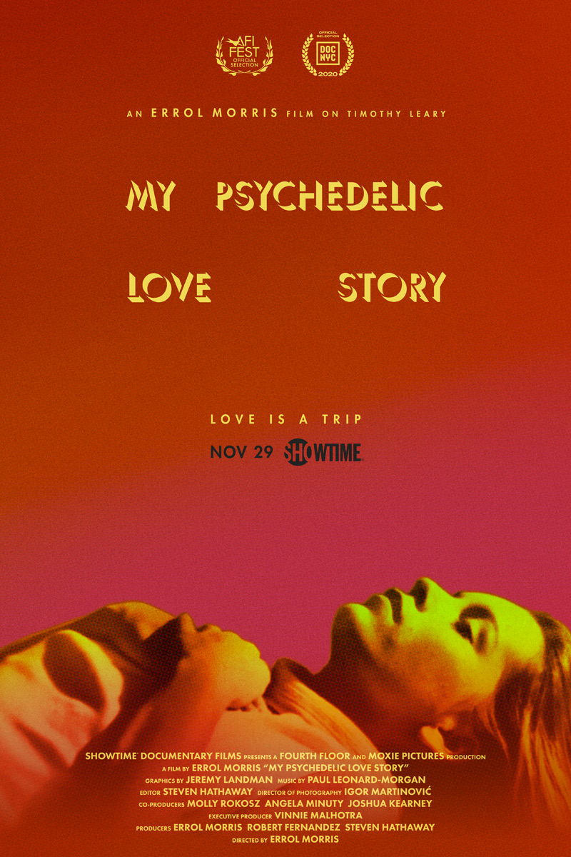 My Psychedelic Love Story Poster