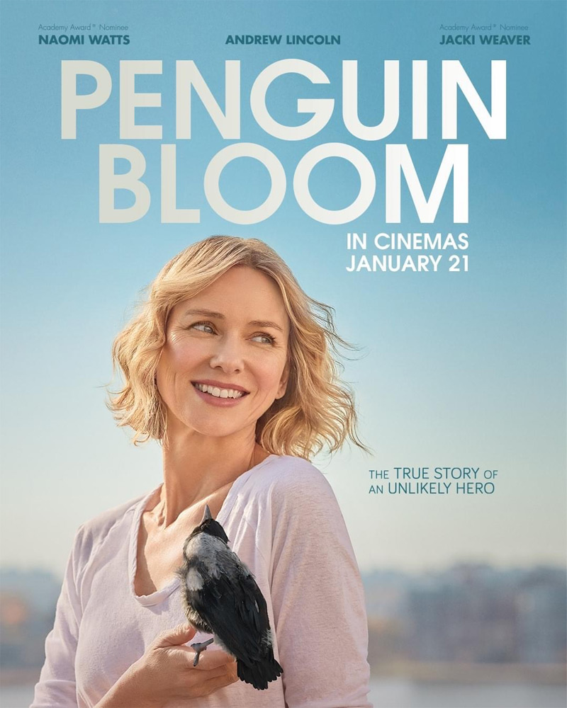 Penguin Bloom Poster