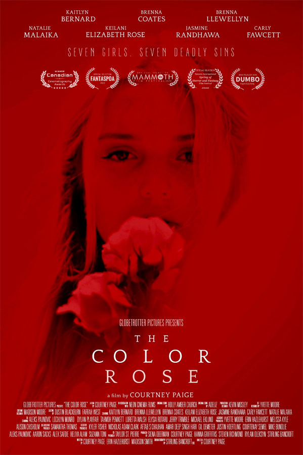 The Color Rose Poster