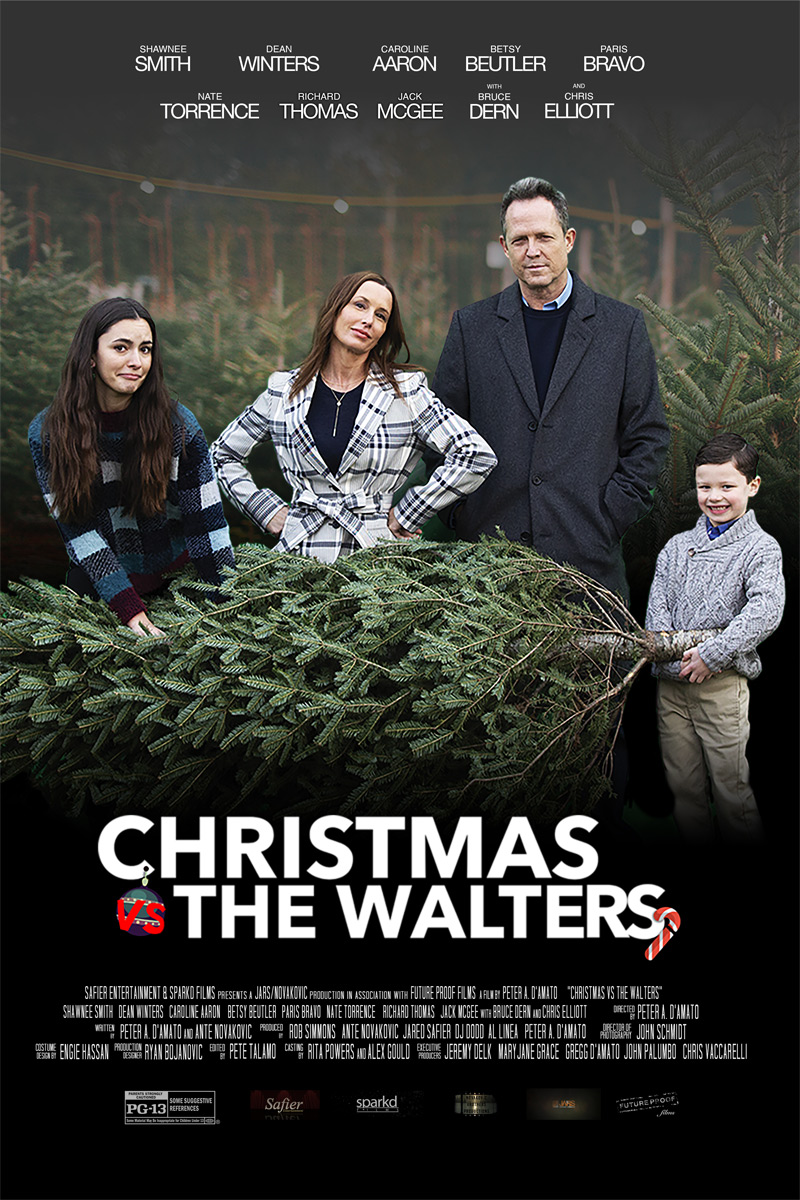 Christmas Vs The Walters Poster