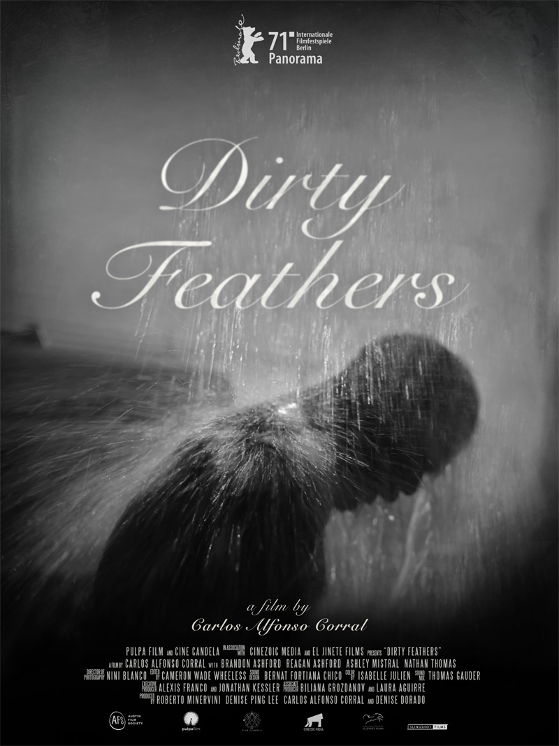 Dirty Feathers Poster
