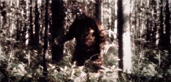 Sasquatch Trailer