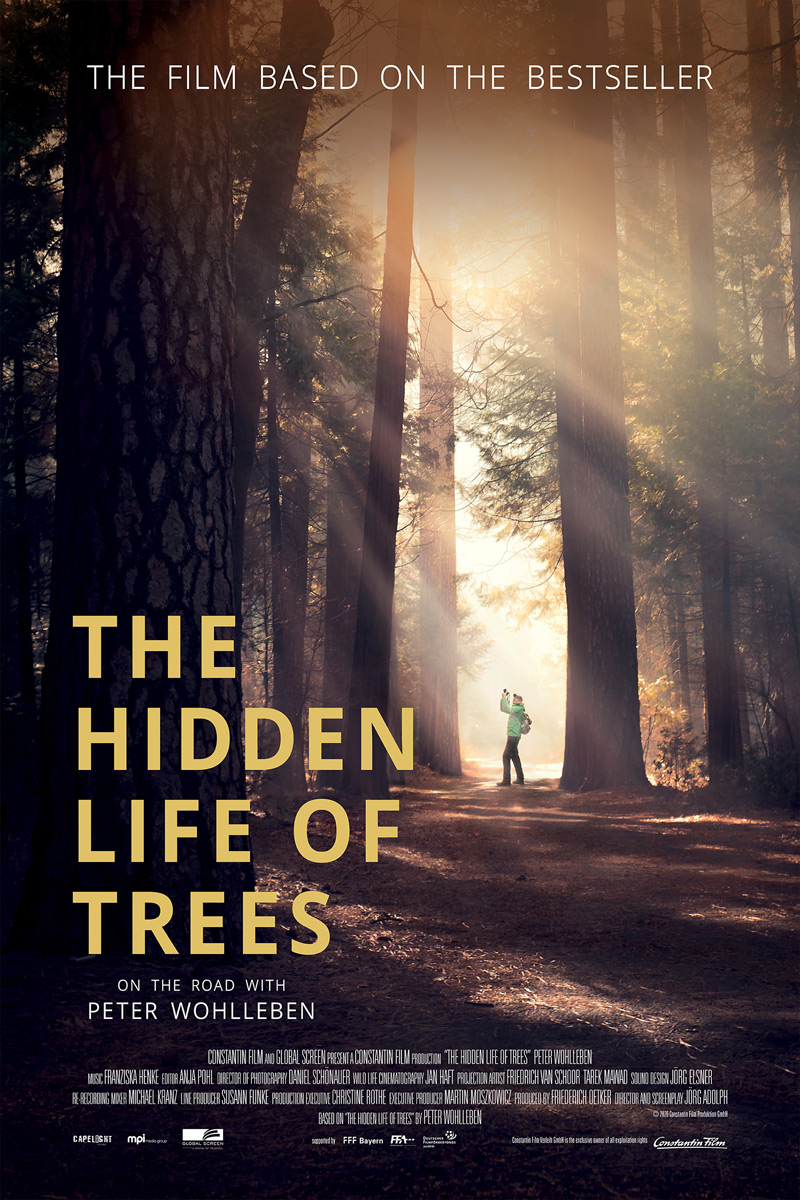 The Hidden Life of Trees Poster