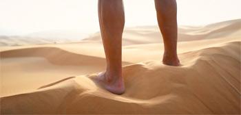 Into the Lost Desert Trailer