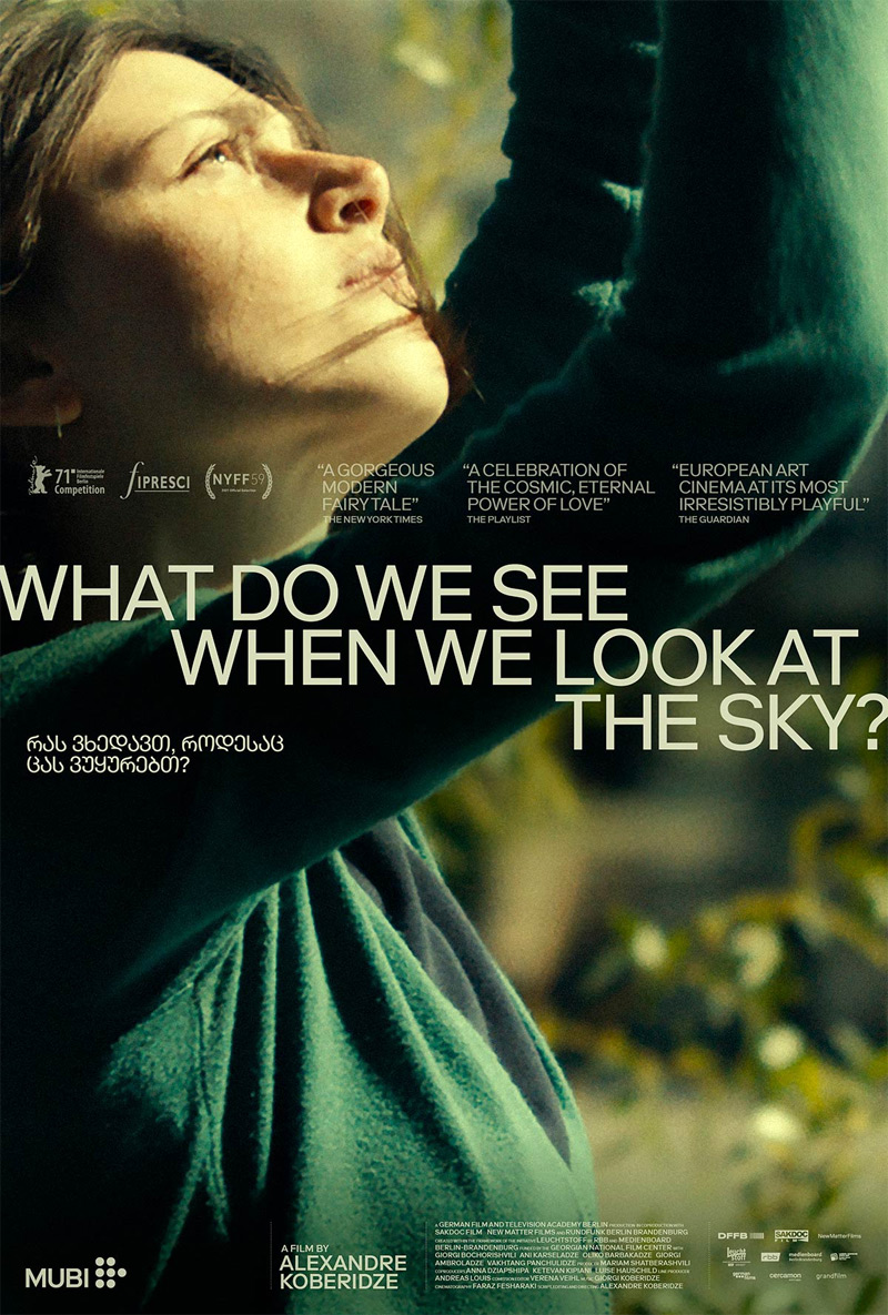 What Do We See When We Look at the Sky? Poster
