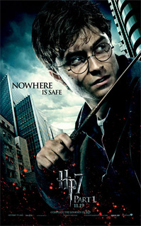 Harry Potter and the Deathly Hallows Banner - Harry