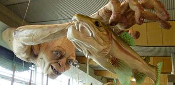 Gigantic Gollum at Wellington Airport