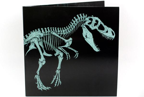 Jurassic Park Mondo Vinyl - Dan McCarthy