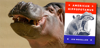 American Hippopotamus