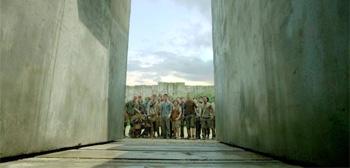 The Maze Runer